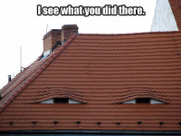 roof-i-see-what-you-did-there.jpg